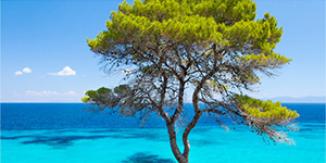 beaches-chalkidiki-pella-beach-luxury-hotel